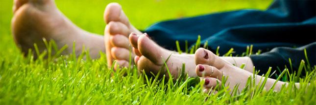 Pieds dans l'herbe