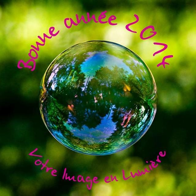 voeux bulle macro