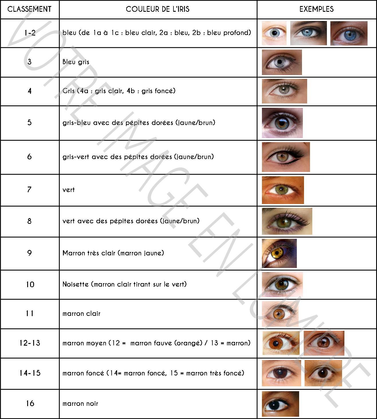 Classement couleur des yeux selon Martin-Schultz - Votre image en lumière