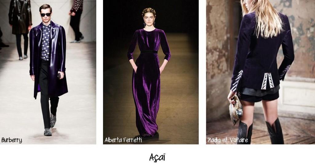 L'excellence d'Açaï, un prune violet sombre